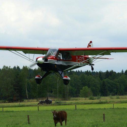 Aviat Husky A1  D-EICI